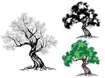 Oak Tree Illustration