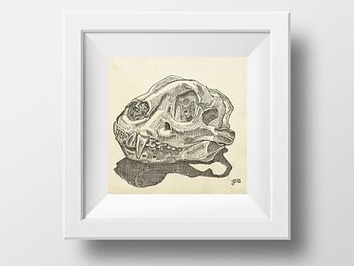 Study of Jaguar Skull nature ink illustration
