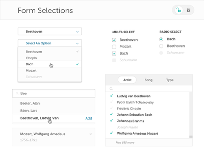 Blue steel Styleguide : Form Selection lock search multi-select radio buttons checkboxes dropdown selection forms ui elements styleguide