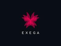 Exega Concept