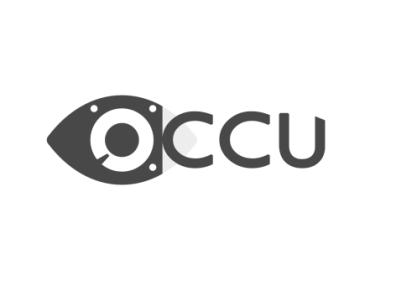 Occulatum logo web design