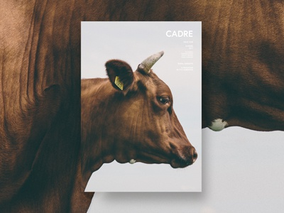 Cadre - Magazine concept for a rural magazine