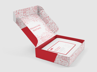 BNA Box mockup finance tax pattern illustration red package welcome box