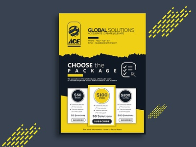 Corporate Package Flyer Design