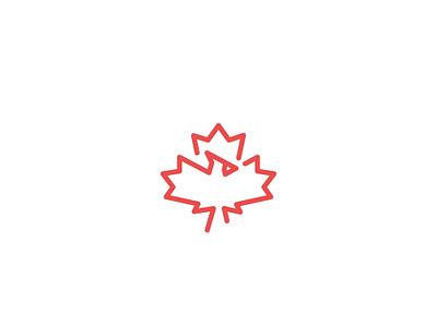 Cardinal Bird bird icon bird logo maple leaf creative lines simple icon minimal cardinal canadian bird