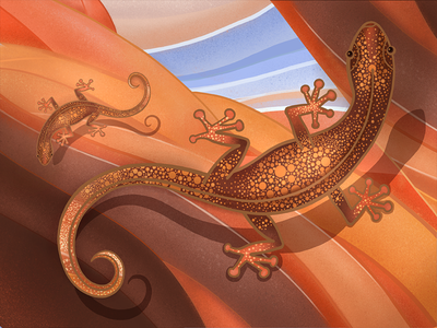The Golden Lizard - Second Composition flat lizard desert hand drawn painting digital painting art illustration yellow photoshop orange