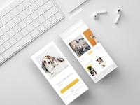 mockup experience design (House Pet Adoption Experience)