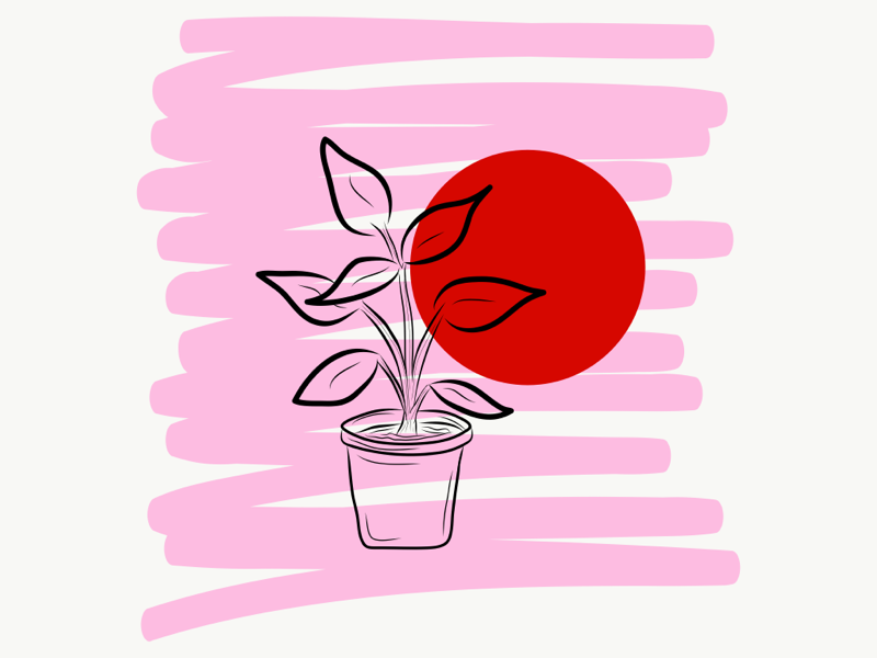 Growing 🌿 red pink plant minimalism minimalistic simple doodle illustration drawing adobedraw