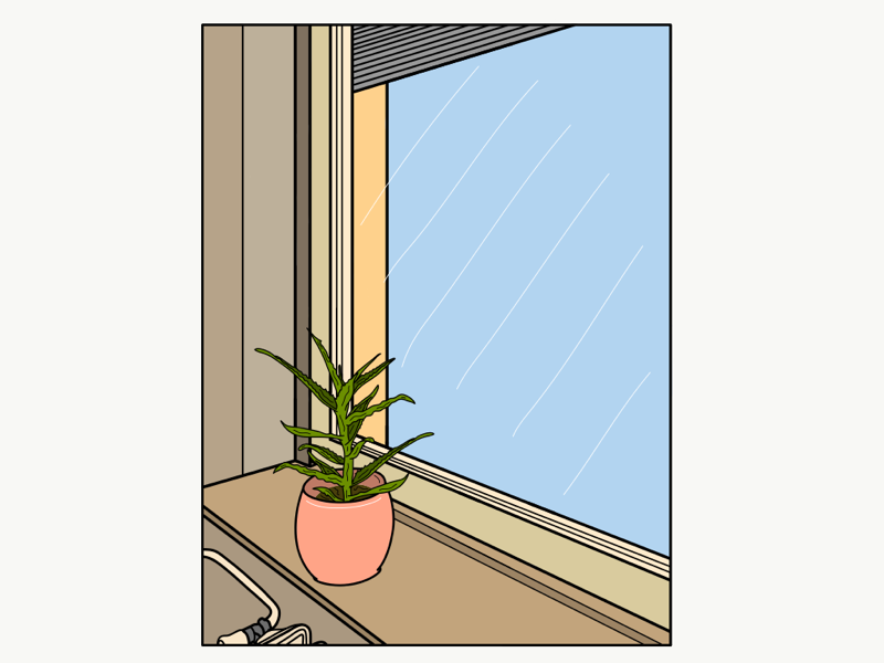 Lonely plant staring out the window 🌿 geometric colourful lonely window plant simple minimalistic minimalism illustration drawing doodle adobedraw