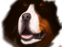 Doggie Illustration