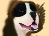 Rocky the Dog 2