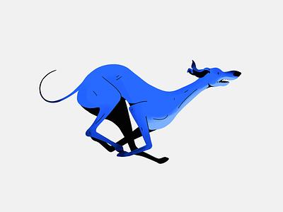 Greyhound run pose illustration figures animal greyhound dog