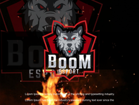 Boom Esport design logoinspiration animation illustration vector logodesign