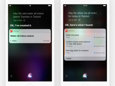Todoist + Siri