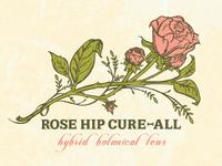 rose hip cure-all_alternate
