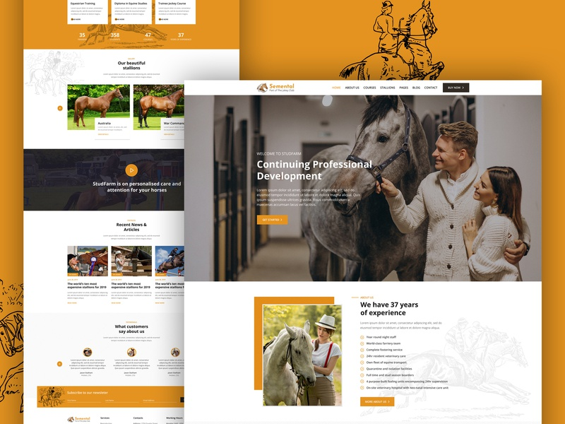 Semental | Stud Farms and Stables HTML Template grooming equestrian farms stable horse racing course farm animal web design