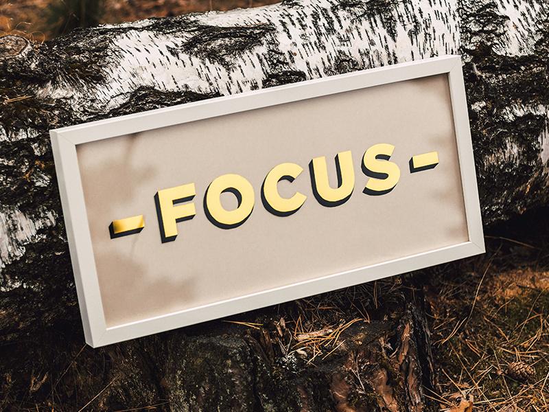 Focus Gild handlettering painting sign leaf gold glass gilded lettering