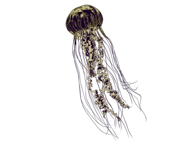 UNDER THE SEA editorial illustration creature creative ocean sea nature jellyfish print digital magazine editorial digital art illustrator artwork illustration vector