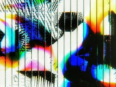 iridescent zebra