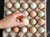 chicken eggs and jug of various colors and types
