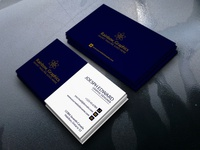 BlueWhite Business Card