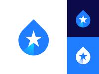 Mountain, Star, Drop Logo Concept