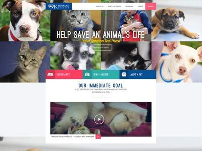 Oklahoma Humane Society humane adoption cats dogs animals