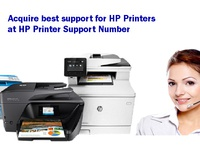 Acquire best support for  HP Printer Support Number