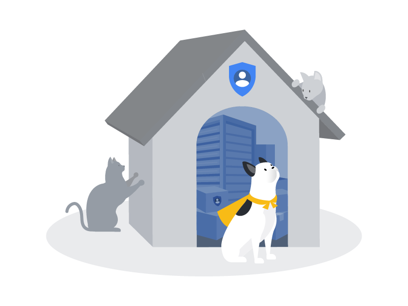 Store data securely! privacy security data illustration cat dog