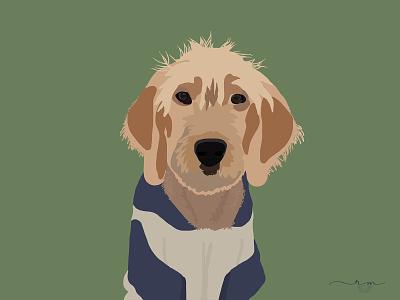 Parker The Doodle digital art stylized doodle dog digital painting pet portrait