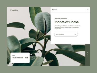 Plant Store - Concept
