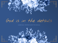 God is in the details. flowers colouroftheyear2020 pantone2020 pantonecolouroftheyear designprinciples productdesign colouroftheyear classicblue pantone quote design quote