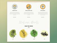 Milagro Herbs