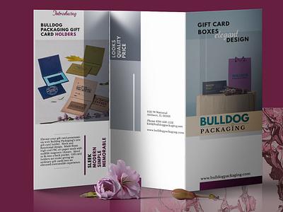 Trifold Brochure Design branding design graphicdesign