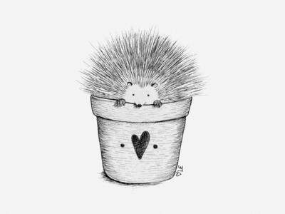 Potted Porcupine Illustration