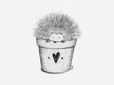 Potted Porcupine Illustration illustrator illustration drawing porcupine animal illustration pen and ink ink illustration