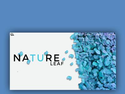 leaf nature blue