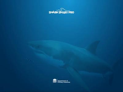 SharkSmart Pro - Login screen with video ipad app mobileapp creative webdesign uidesign ui uxui ipad pro