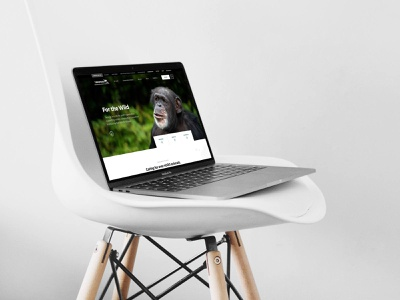 Zoo Homepage concept design webdesign nature conservation biodiversity animals hero homepage zoo