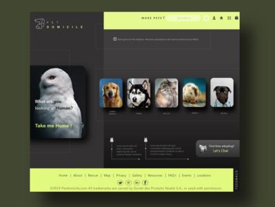 Animal Adoption website design