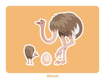 Animal farm: Ostrich