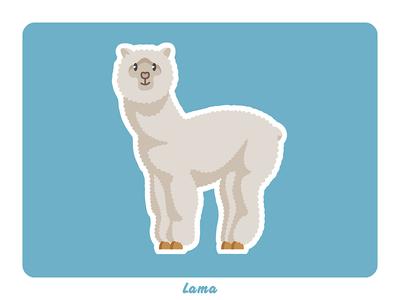 Animal farm: Lama