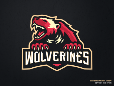 Wolverines Concept
