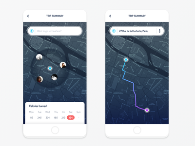 Companion app social network ui ux ios app material card interface calendar map mobile navigation menu gradient flat