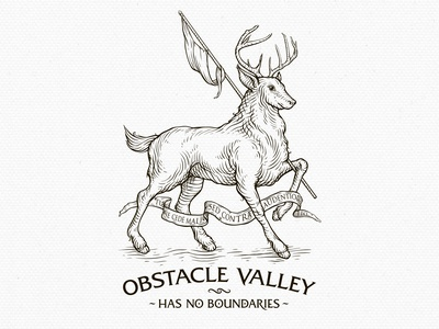 Obstacle Valley