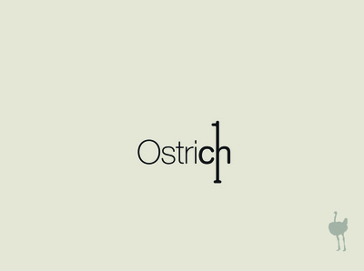 Ostrich Typography Exploration