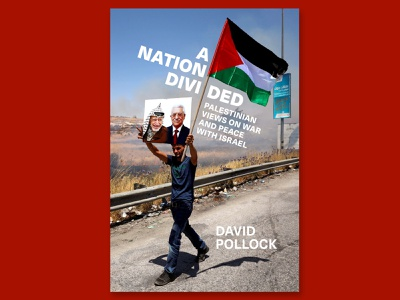 A Nation Divided cover design cover design design cover book cover graphic design