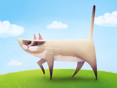 Illustration : Cat