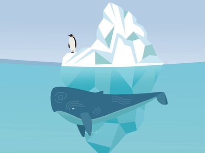 Whale video 2d inspiration fish penguin iceberg whale motiongraphics motion design motion illustration illustrator animation 2d animation after effects adobe