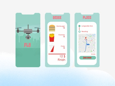 Fly Drone Delivery Challenge
